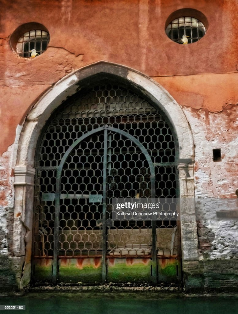 Building with windows and door along Venice canal that look like a watching face. Two birds sit in the windows adding to a look of eyes looking down. Rustic old door with iron gates in a yawning mouth against aged walls and water canal below.