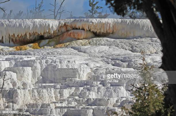 travertine formation in mammoth hot springs in yellowstone national park, wyoming - zen rial stock photos and pictures