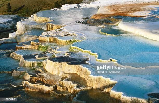 travertine terraces at new blue spring at sunset, mammoth hot springs. - トラバーチン ストックフォトと画像