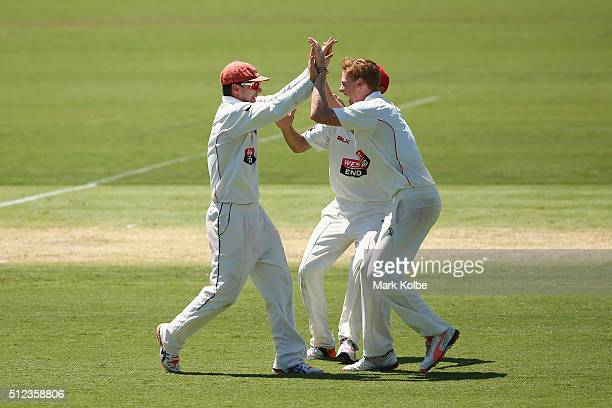 Travis Head and Tom Andrews of the Redbacks celebrate combining to take the wicket of Nic Maddinson of the Blues during day two of the Sheffield...