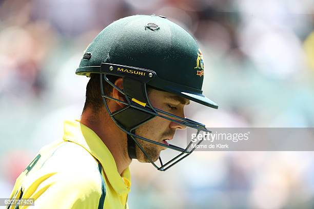 Travis Head of Australia walks out to bat during game five of the One Day International series between Australia and Pakistan at Adelaide Oval on...