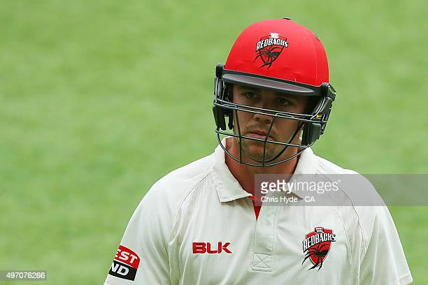 Travis Head of the Redback is dismissed by James Hopes of the Bulls during day one of the Sheffield Shield match between the Queensland Bulls and...