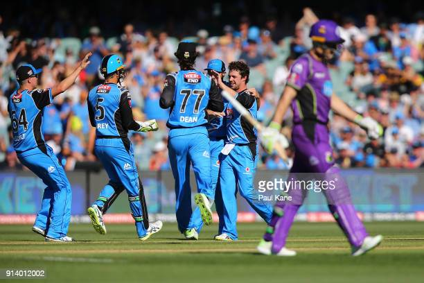 Travis Head of the Strikers celebrates the wicket of Tim Paine of the Hurricanes during the Big Bash League Final match between the Adelaide Strikers...