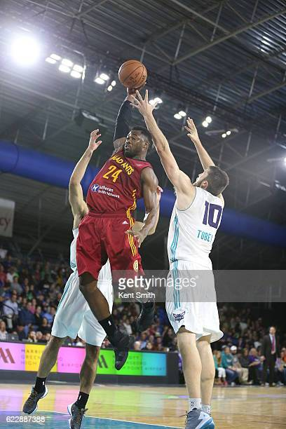 Travis Leslie of the Fort Wayne Mad Ants goes up strong against Mike Tobey of the Greensboro Swarm during the game at the The Field House at the...