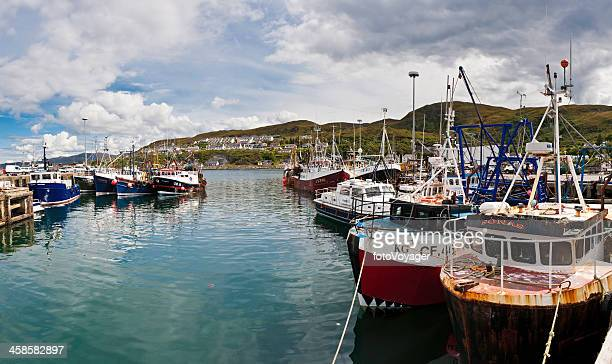 trawler fishing boat fleet harbour highlands scotland - mallaig stock photos and pictures