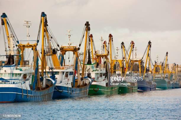 trawler fleet docked at pier in middelburg / netherlands - middelburg netherlands stock pictures, royalty-free photos & images