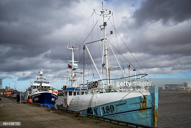 A trawler sits at the dockside of Grimsby Fish Market Greater Grimsby is famed for it's fishing and sea industries and is destined to be one of the...