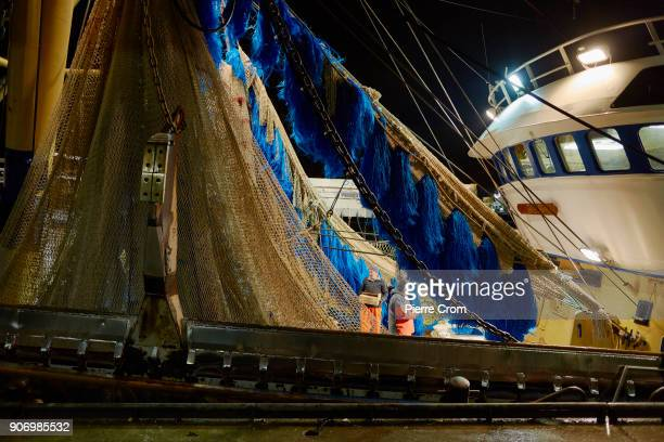 A trawler using pulse fishing nets is seen anchored in the port of Scheveningen on January 19 2018 in The Hague Netherlands A large majority of...