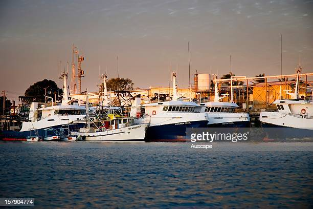 Trawlers tied up in the port. At the mouth of the Norman River, the town is the hub of the Gulf's prawning industry.. Karumba, Gulf Savannah,...