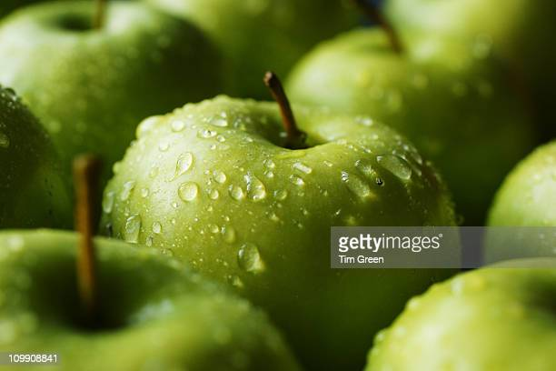 a tray full of granny smiths - freshness stock pictures, royalty-free photos & images