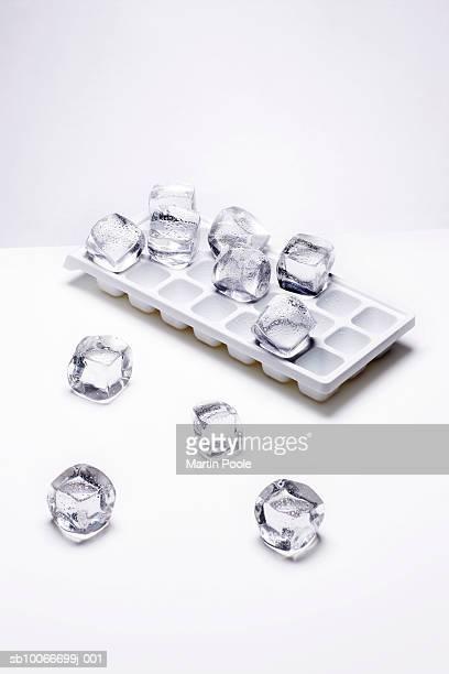 tray of melting ice cubes - ice cube - fotografias e filmes do acervo