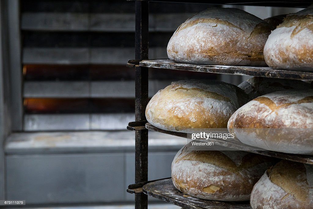 Trays of bread in a bakery : Stock Photo