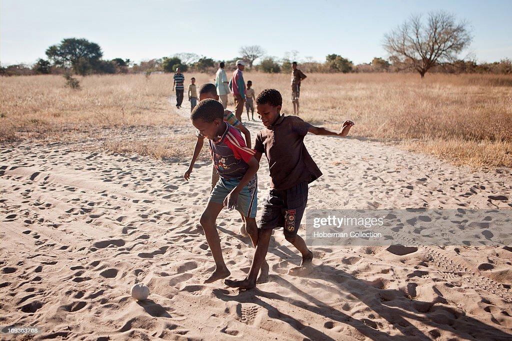 Bushmen boys : News Photo