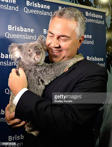 Treasurer Joe Hockey holds a Koala after been shown through the host venue the Brisbane Convention Exhibition Centre during an official walk through...