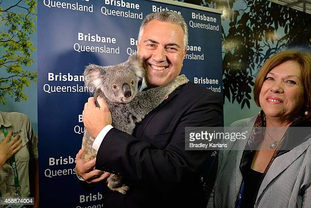 Treasurer Joe Hockey is seen holding a Koala during an official walk through of the host venue the Brisbane Convention Exhibition Centre on November...