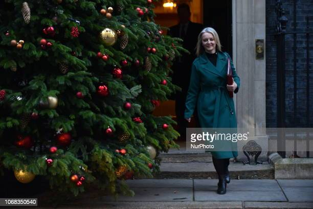 Treasury Chief Liz Truss leaves 10 Downing Street after attending the weekly Cabinet Meeting ahead of five days of crunch debate over Theresa May's...