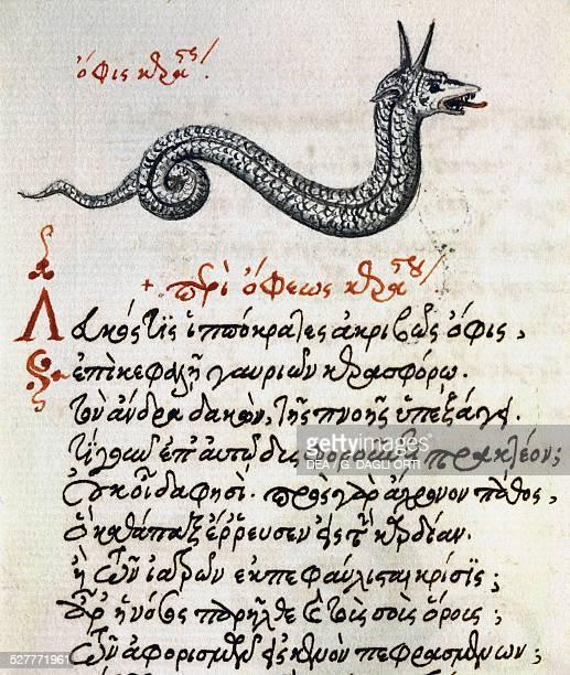 Treatise on the Basilisk test and miniature from the De animalium natura et proprietate libellus by Aelianus 15th century Greek manuscript Greece...