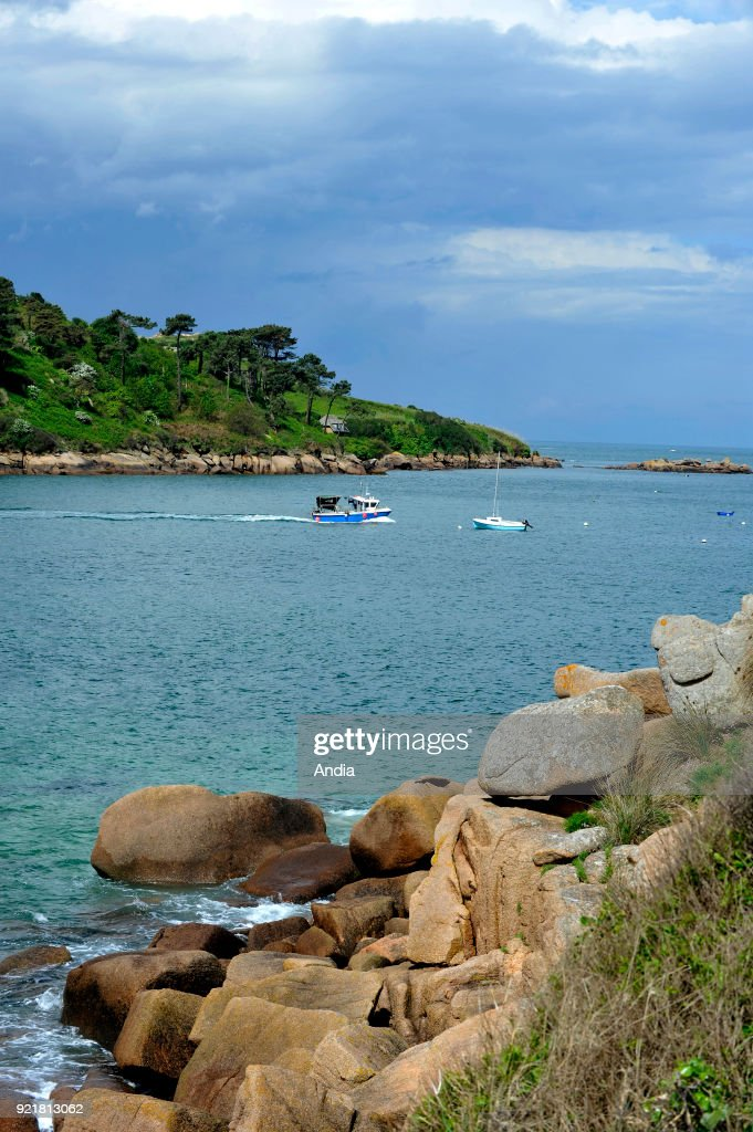 Treburden (Brittany, north-western France), along the 'Cote de Granit rose' (Pink Granite Coast): the 'pointe du Castel' headland in the foreground and the 'Ile Milliau' island in the distance, small fishing boat sailing back to the port, here in the 'passe du Castel' fairway.