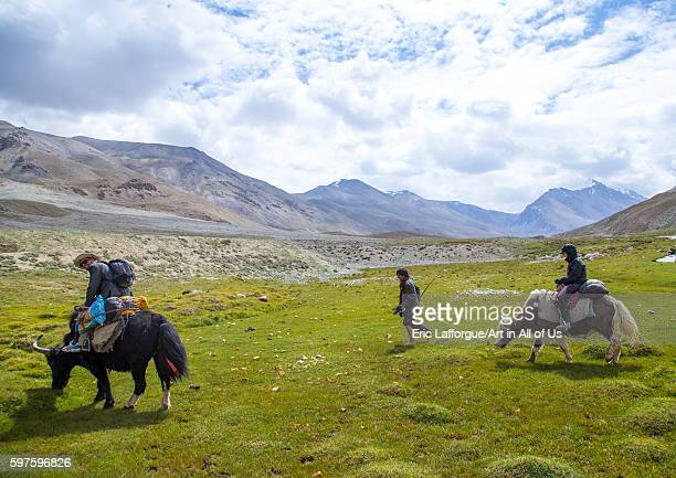 Treck in the pamir mountains with yaks big pamir wakhan Afghanistan on August 11 2016 in Wakhan Afghanistan