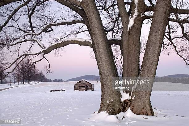 tree and cabin at twilight - american troops at valley forge stock pictures, royalty-free photos & images