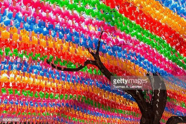 tree and colorful paper lanterns at the jogyesa temple in seoul, south korea. lanterns are set for the lotus lantern festival, celebrating the buddha's birthday. - buddha's birthday stock pictures, royalty-free photos & images