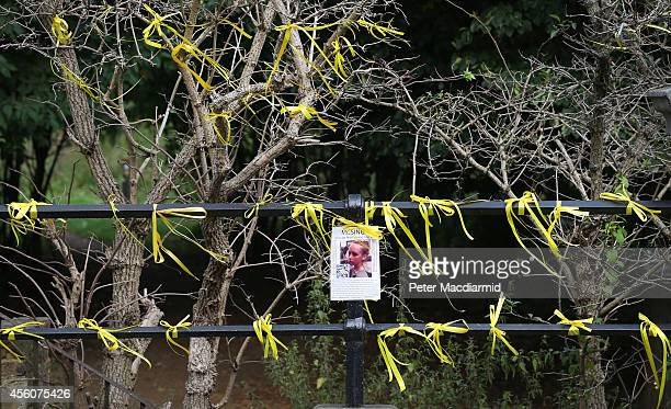 A tree and fence are covered in yellow ribbons as the search for missing school girl Alice Gross continues on September 25 2014 in London England The...