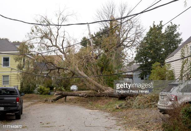 Tree and power line damage completely block a neighborhood road near Willard Beach in South Portland on Thursday Oct 17 2019