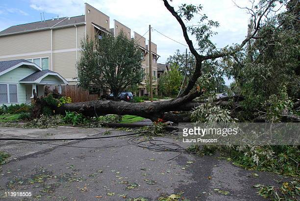A tree blocks a street in a central Houston neighborhood A fallen power line is also visible This is damage caused by Hurricane Ike when it hit...