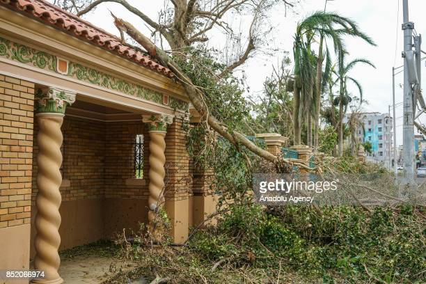 A tree blocks the main entrance at the University of Puerto Rico Rio Piedras campus after Hurricane Maria at Ponce de Leon Avenue in San Juan Puerto...