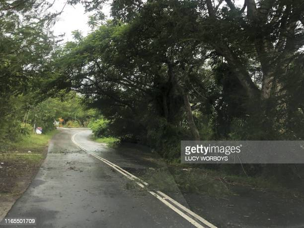 Tree branches are seen in the road during the approach of Hurricane Dorian on September 1, 2019 in Nassau, Bahamas. - Hurricane Dorian strengthened...