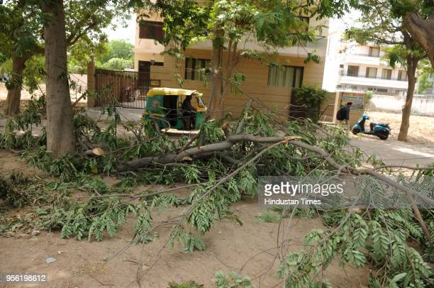 Tree branches fell at Sushant Lok road due to due storm on Monday late night on May 8 2018 in Gurgaon India Dust storms rain and thunder lashed out...