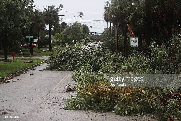 Tree branches that snapped off trees are seen blocking the road after Hurricane Matthew passed through the area on October 7 2016 in Fort Pierce...