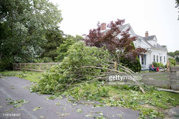 Tree damage after a tornado touched down in the area on July 23, 2019 in Harwich, Massachusetts. A rare tornado brought 80 mph winds to parts of...