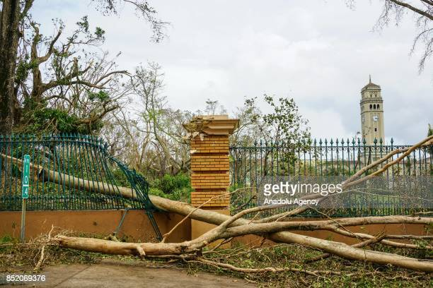 A tree damaged a fence at the University of Puerto Rico Rio Piedras campus after Hurricane Maria at Ponce de Leon Avenue in San Juan Puerto Rico on...