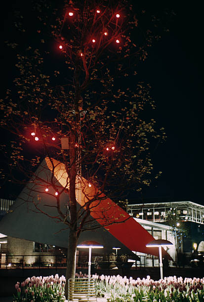 A tree decorated with fairy lights at the Festival...