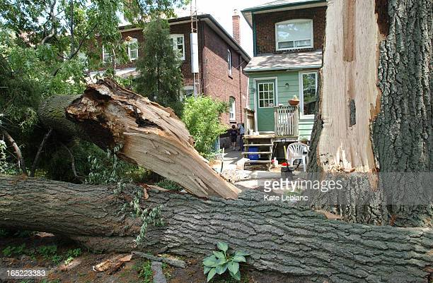 tree down_KL07_060705_ Shown here is the backyard of a house on Beresford Avenue where part of a tree crashed down damaging the deck and a fence and...