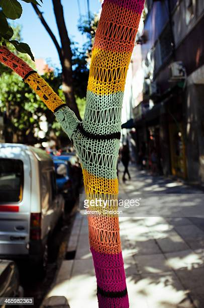 Tree features a custom knitted sock in Buenos Aires, Argentina.