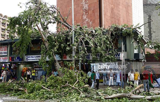 Tree fell on shops and road during sudden thunderstorm followed by rain at Janpath on May 30 2014 in New Delhi India At least nine people were killed...