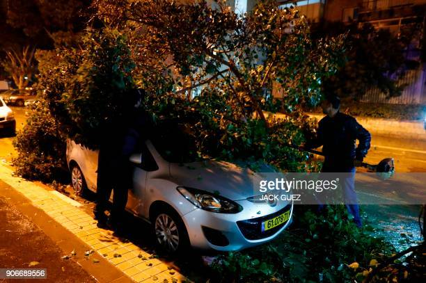 TOPSHOT Tree fellers cut a tree blocking the road in the Israeli Mediterranean town of Netanya north of Tel Aviv after it fell due to heavy winds as...
