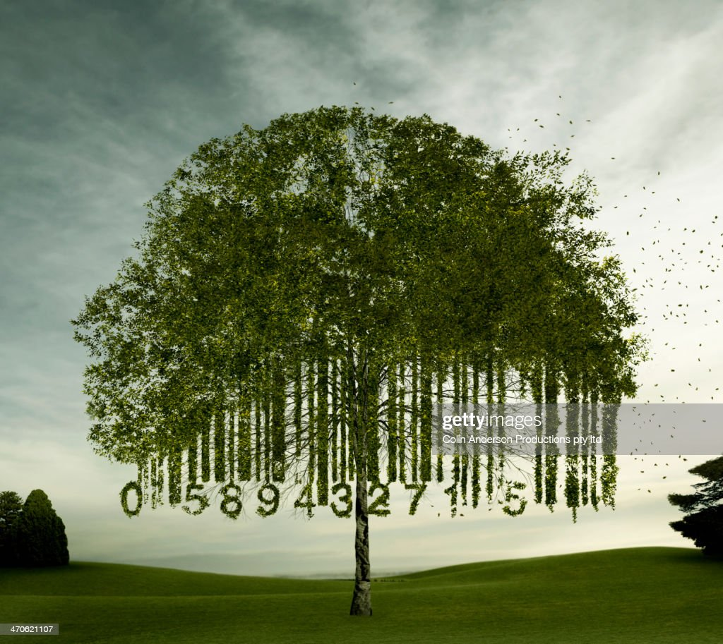 Tree growing in bar code shape : Stock Photo