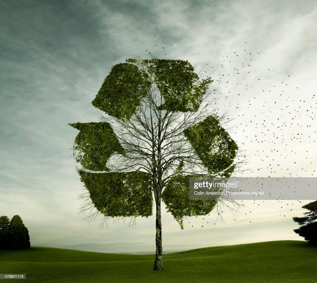 Tree growing in recycling symbol shape : Stock-Foto