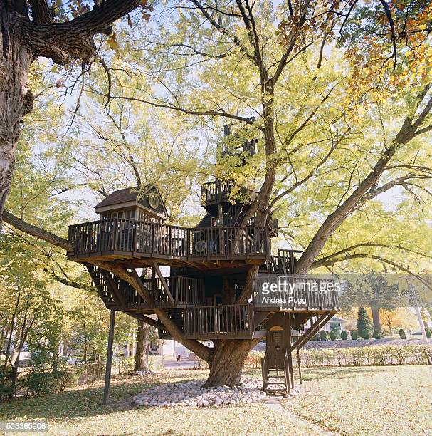 Tree House in St. Louis Park