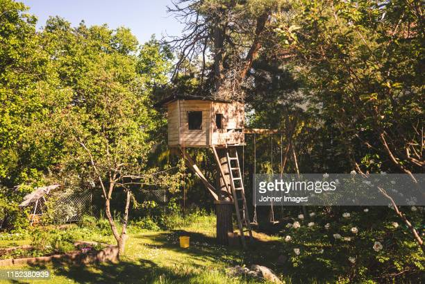 tree house - tree house stock pictures, royalty-free photos & images