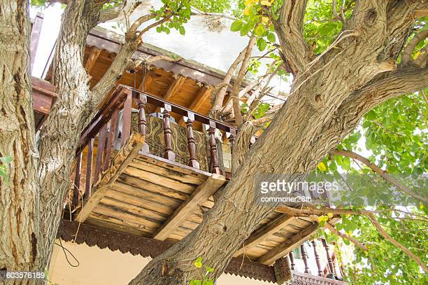 a tree house - gilgit stock pictures, royalty-free photos & images