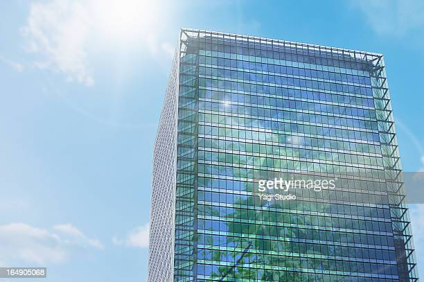 tree image of office building - sustainable architecture stock pictures, royalty-free photos & images