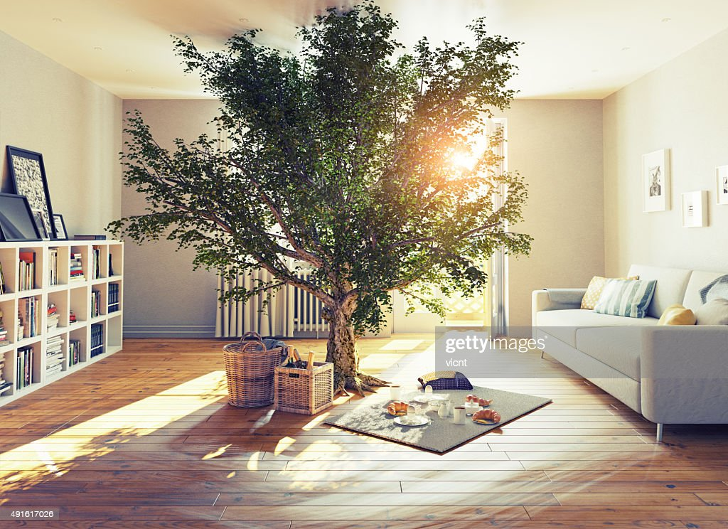 tree in a room : Stock Photo