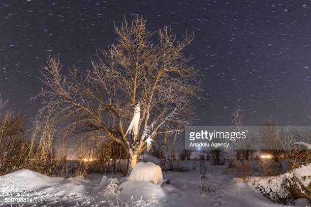 A tree is covered with icicles which slowly froze over after a drinking fountain burst in Van Turkey on December 11 2017