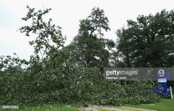 A tree lies across the 9th tee after a storm in the evening delays play ahead of day three of the Saltire Energy Paul Lawrie Matchplay at Golf Resort...