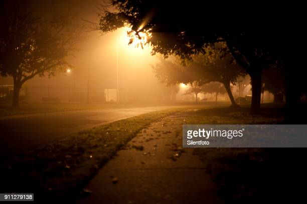 tree lined crescent on foggy night, alameda nas - military base stock pictures, royalty-free photos & images