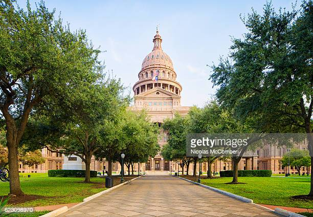tree lined pathway to texas capitol in austin - capitais internacionais - fotografias e filmes do acervo